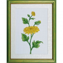 Chrysanthemum, crosstitch PDF chart