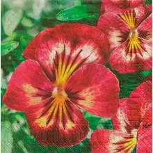 Violets, Paper Napkin 3-ply Aha 33x33cm