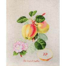Набір для вишивання Luca-S, Яблука (BL22440)